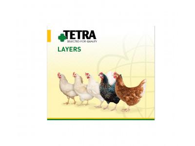 Компания  TETRA